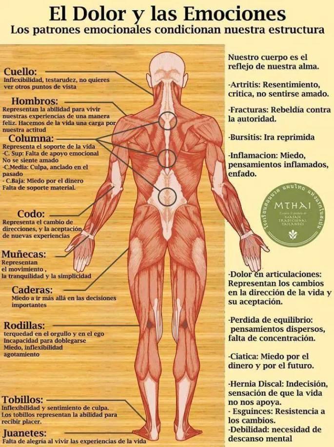 Los dolores en la espalda a la derecha después del parto